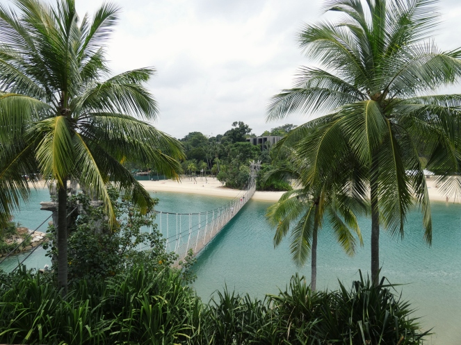 Overlooking two palm trees, a rope bridge and a pristine white sand beach.